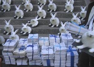 REACH: Bei der Demo in Brüssel wurden ca. 500'000 Unterschriften übergeben