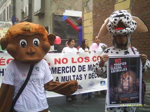 UPA: Protestaktion gegen den illegalen Tierhandel