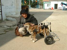 Tierhilfe Hoffnung e.V. - Ute Langenkamp mit einem der vielen geretteten Hunde