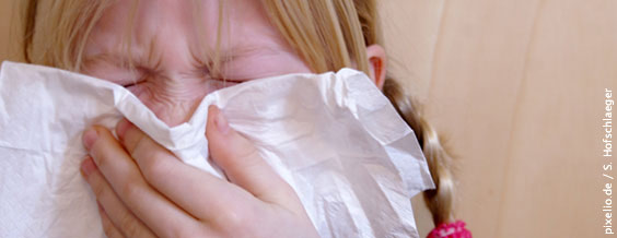 Nach dem Grippeschnupfen beginnt die Blütezeit des Heuschnupfens