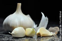 Knoblauch ist gesund, aber wegen des anschliessenden Körpergeruchs nur zweite Wahl