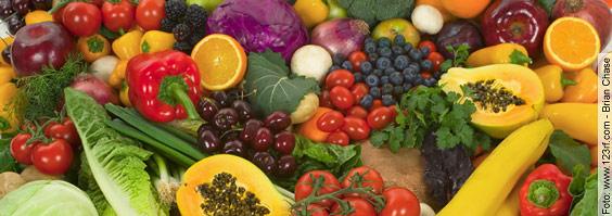 Gesund ohne Tierversuche - Mit idealer Ernährung Krebs, Herzinfarkt, Schlaganfall & Co. vorbeugen (Teil 2)
