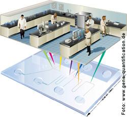 Auf einem Biochip kann ein ganzes Labor untergebracht werden
