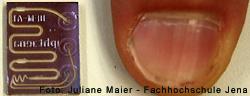 Mit dem Chip der FH Jena können z.B. neue Wirkstoffe für Kosmetikprodukte erprobt werden
